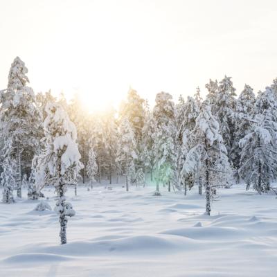 Att göra i Dalarna under vintertid
